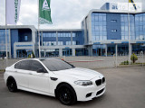BMW 5 Series M -Performance                                            2010